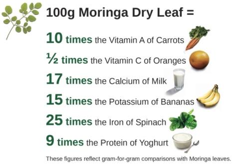 Have you heard of moringa?